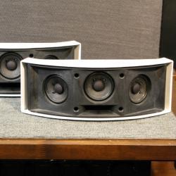Bose 151SE Speaker