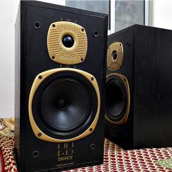 Tannoy E-10 Speaker